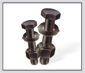 High Strength Friction Grip Nuts